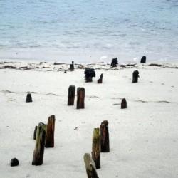 Beach, Allihies