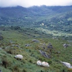 Cork-Caha Mountains