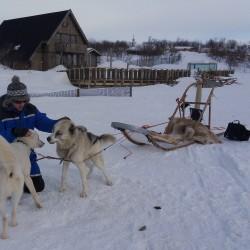 Tom with huskies