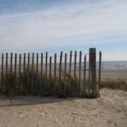Beach_dune_fence_hr