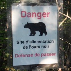 Quebec bear Sacacomie warning sign