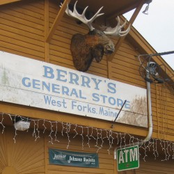 Berry's one stop shop