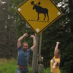 Moose-chasing
