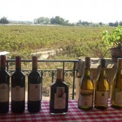 Meridiana wine estate