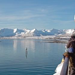 Cruising Arctic coast