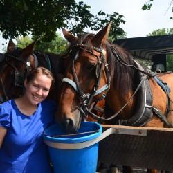 Miriam and horses